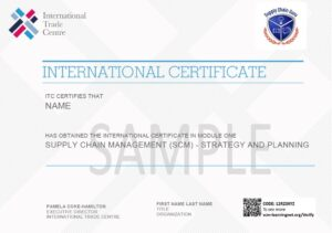 International Professional Certificate - Module 1 Strategy and Planning sample